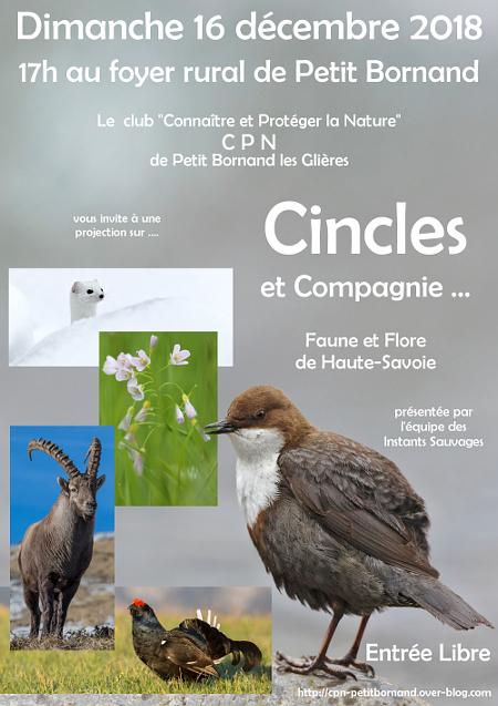 Diaporama sur la faune de Haute-Savoie ce dimanche 16 décembre Affich12