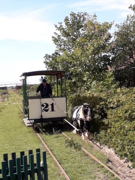 Die älteste Pferdebahn Europas auf Spiekeroog. 20190171