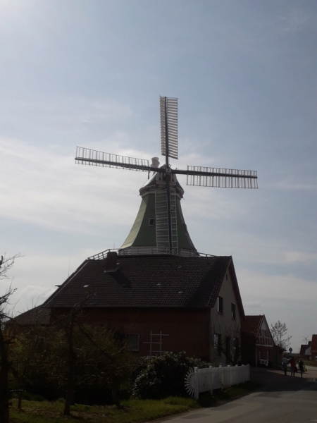 Alte Windmühlen. 20210439
