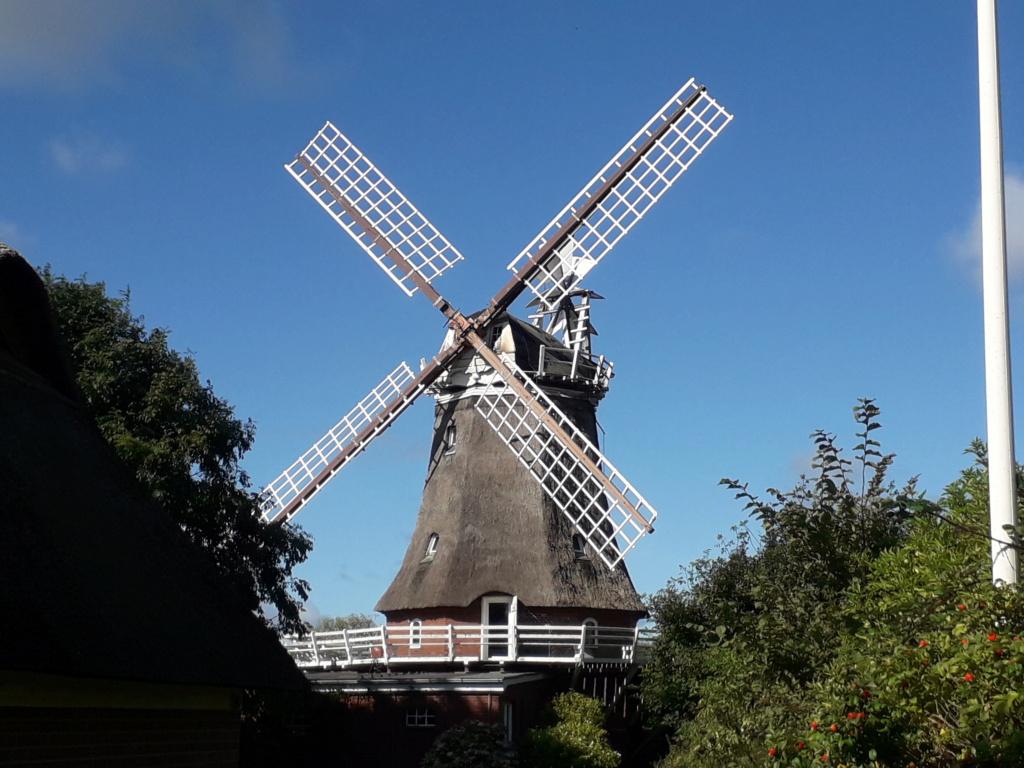 Alte Windmühlen. 20210922