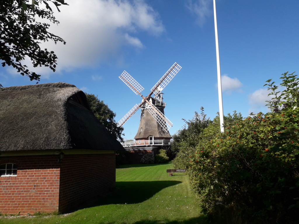 Alte Windmühlen. 20210923