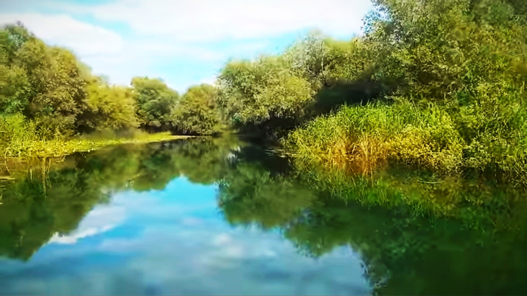 Mušičarenje klena na Skadarskom jezeru Img_2013
