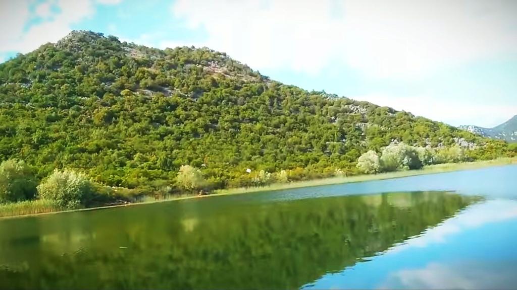Mušičarenje klena na Skadarskom jezeru Img_2014
