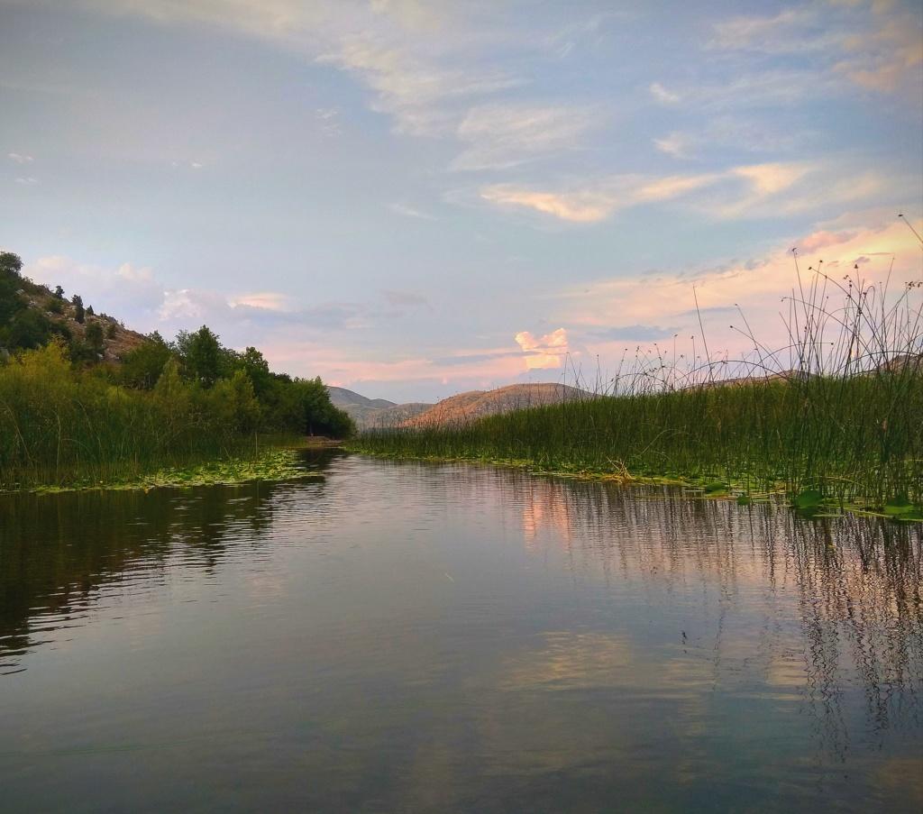 Mušičarenje klena na Skadarskom jezeru Img_2019