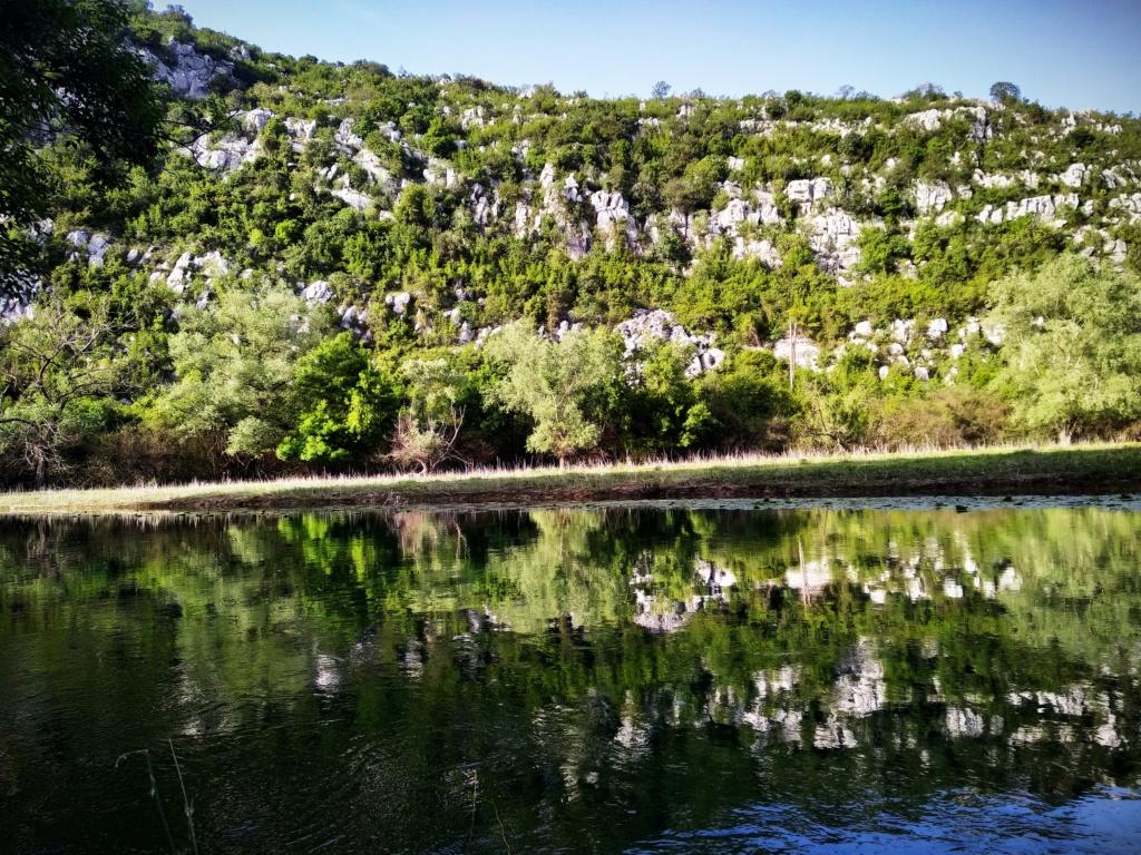 Mušičarenje klena na Skadarskom jezeru Img_2030