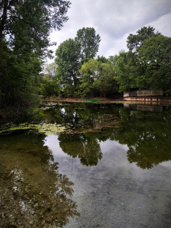 Mušičarenje klena na Skadarskom jezeru Img_2031