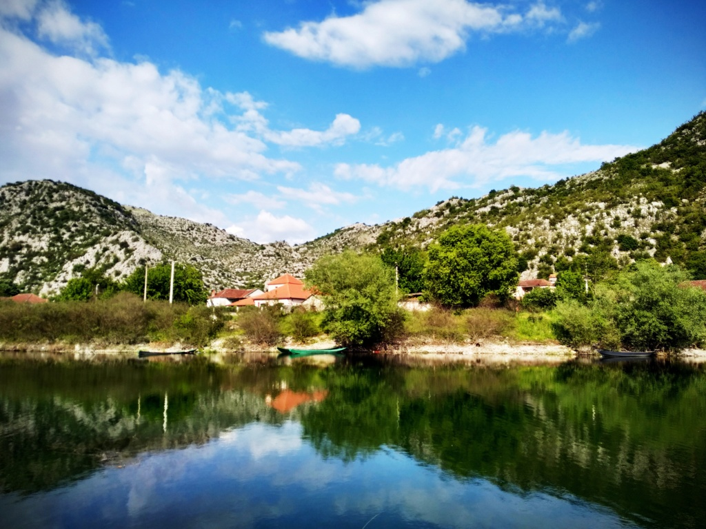 Mušičarenje klena na Skadarskom jezeru Img_2033