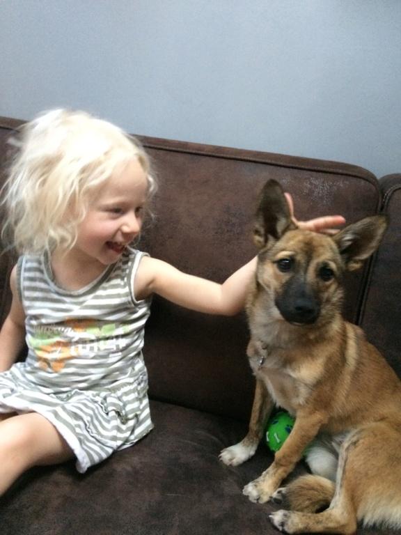 Adoption de Hazel Img_1413