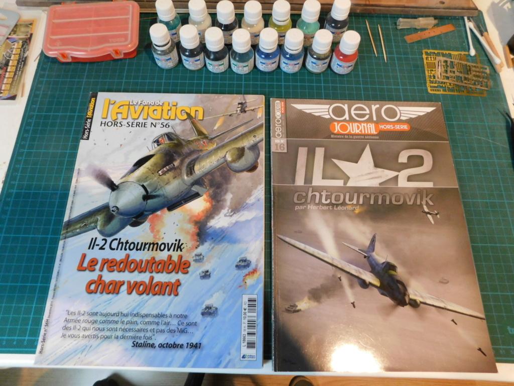Le Il-2 Chturmovik Tamiya au 1/48ème à ma façon. Dscn0672