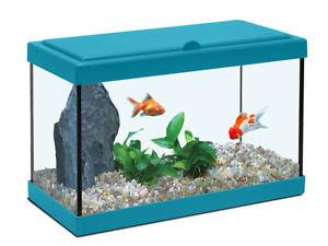 Mon poisson rouge fait des bulles S-l30011