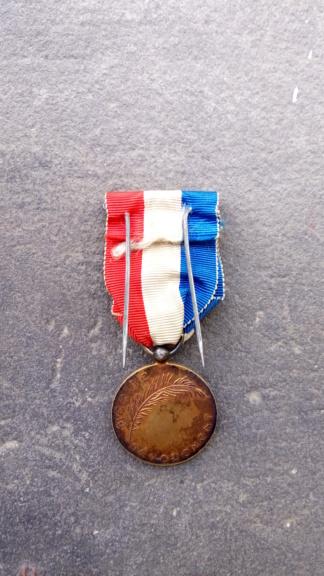 Identification et estimation d'une médaille française P_202010