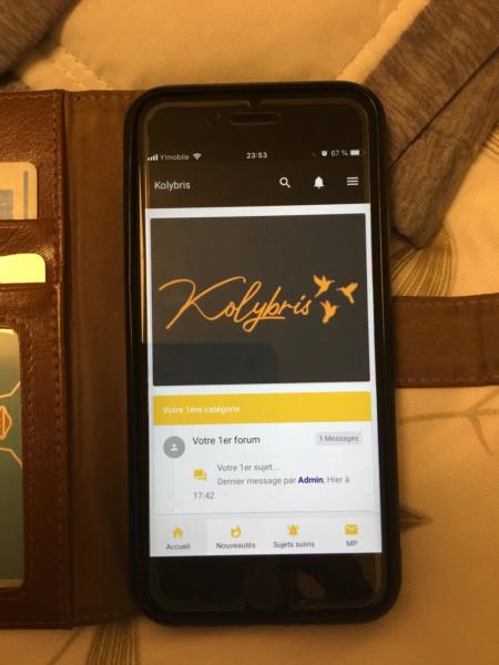 Problème (taille, couleur) avec la box en arrière-plan du logo sur la version mobile  Unname10