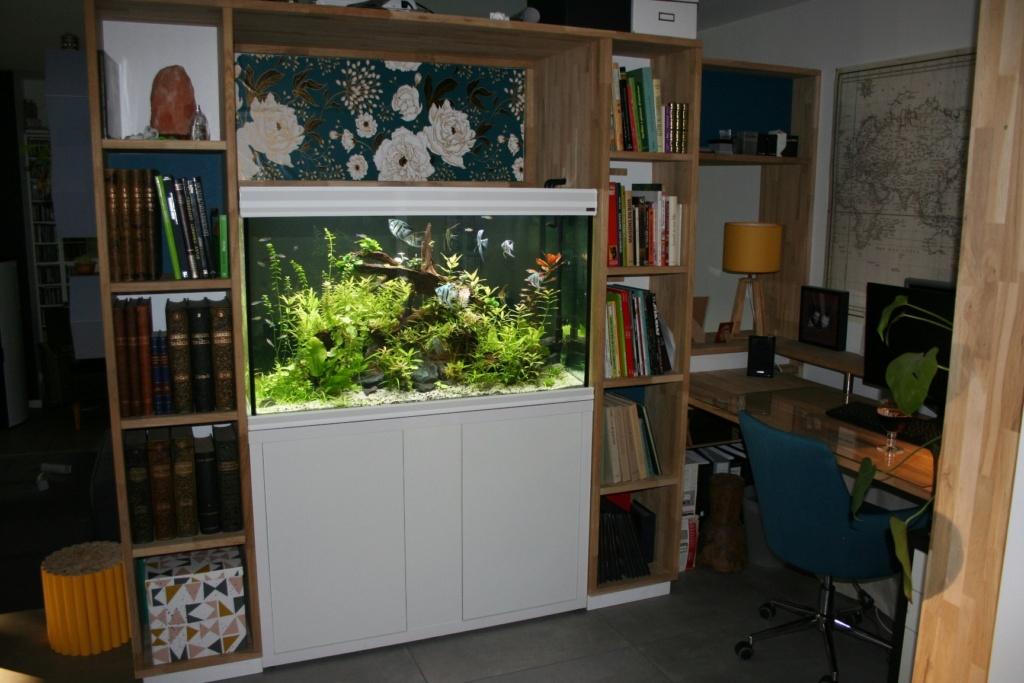 Aquarium intégré dans bibliothèque Img_8414