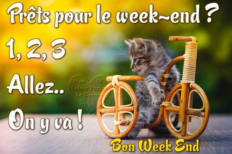 Ici on se dit bonjour  - Page 20 33003311