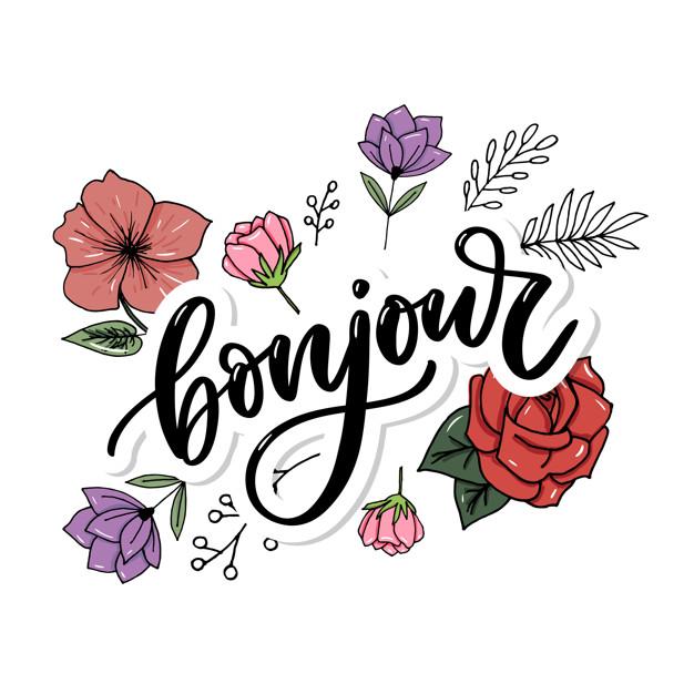 Ici on se dit bonjour  - Page 21 Inscri10
