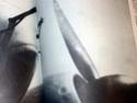 cherche image du logo d'hélice  chauvière Hpim4212