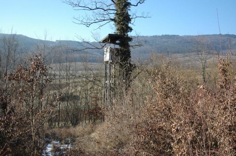 construction de miradors et postes d'affût Mirado11