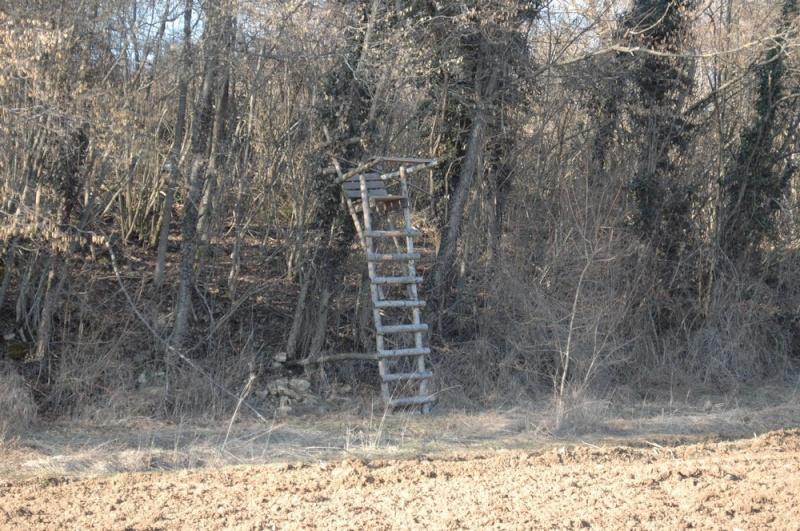 construction de miradors et postes d'affût Mirado12