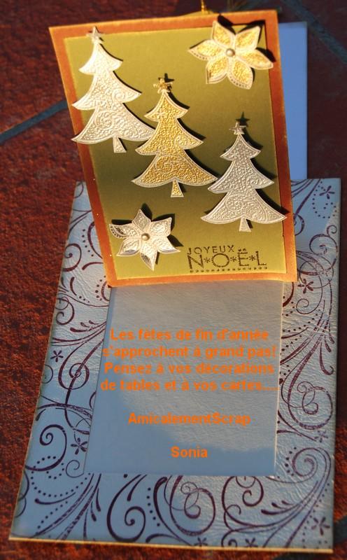Cartes de Noel 2008 Carte-10