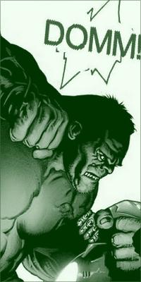 Le staff du forum Hulk210