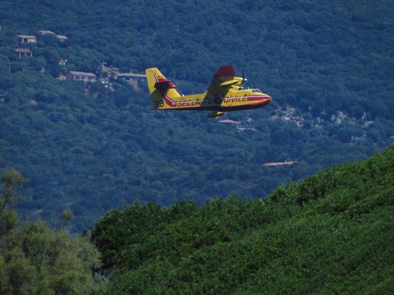 Canadair Dsc00311