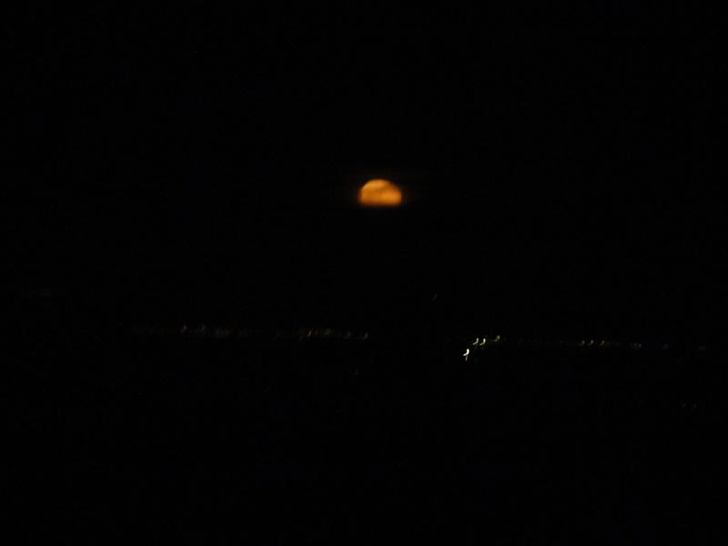 C'est sympa la nuit aussi! Dsc03910