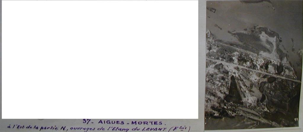 Grau-du-Roi- Aigues-Mortes 1944- 338 Inf Div  Forum11