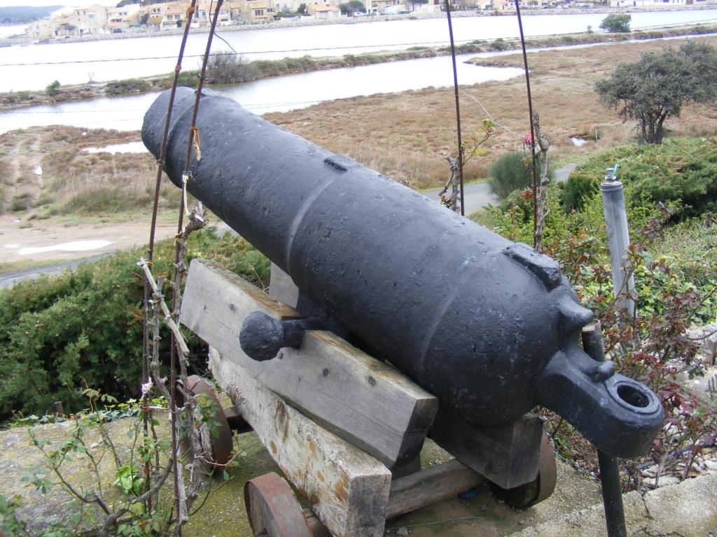 canons à vendre Museeg10
