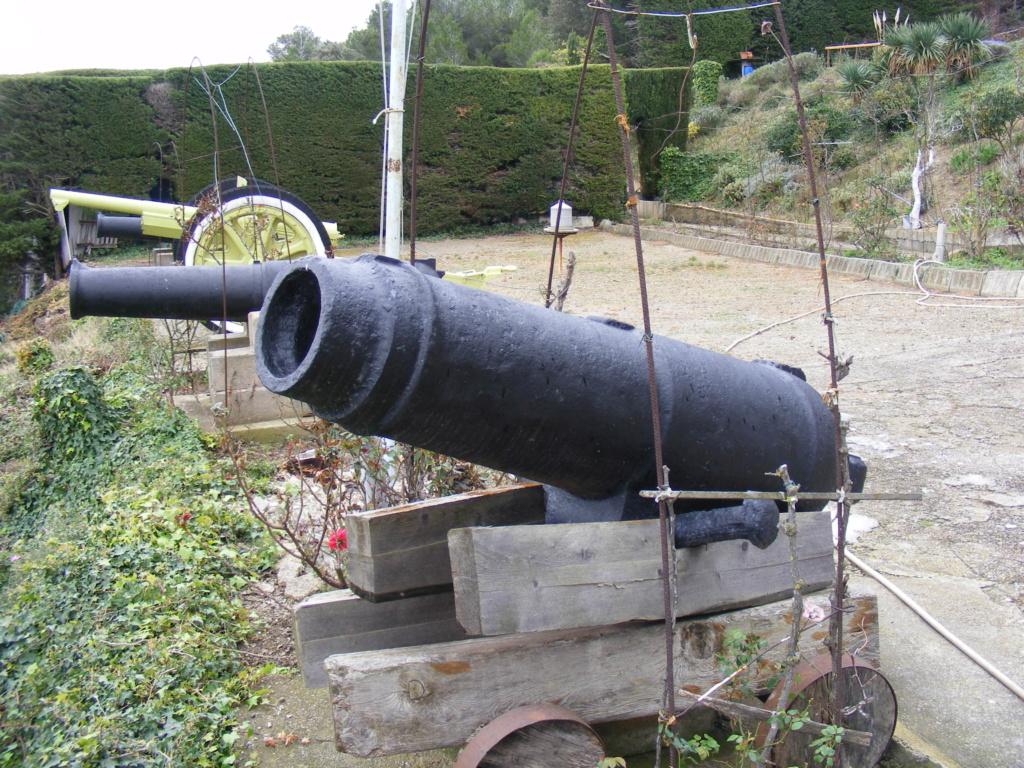 Les canons de Gruissan (R Bosc) à vendre Museeg12