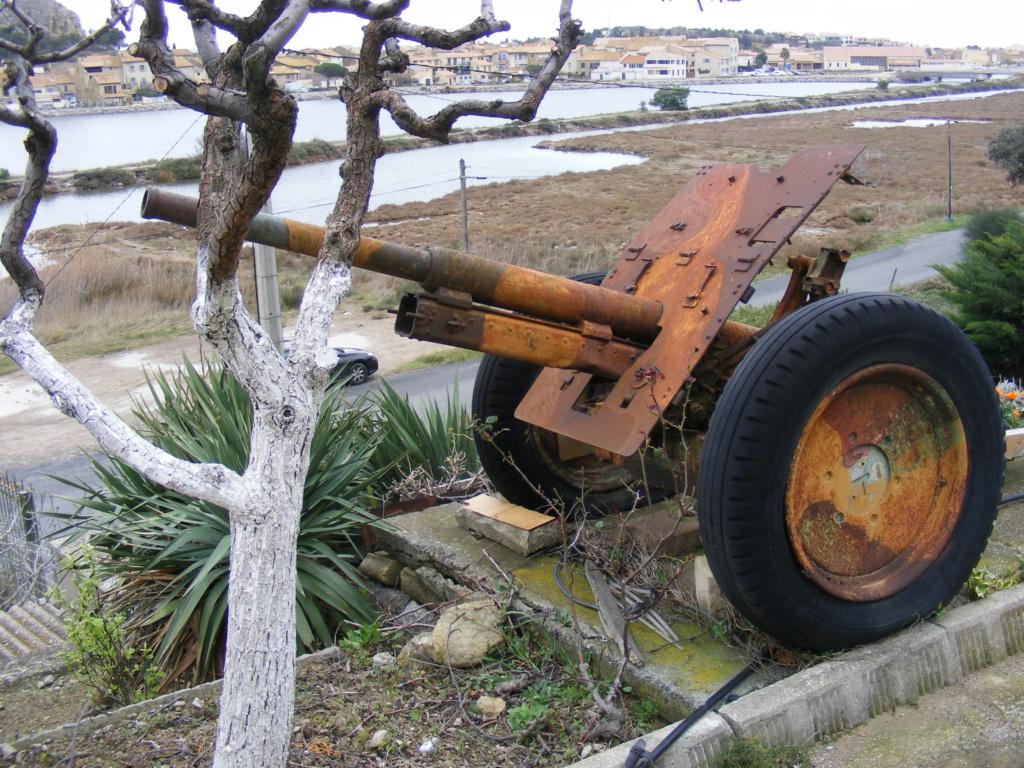 Les canons de Gruissan (R Bosc) à vendre Museeg13