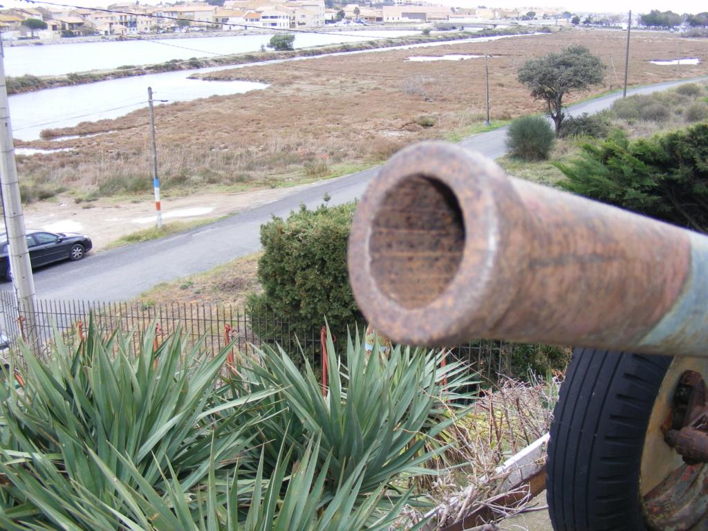 canons à vendre Museeg16