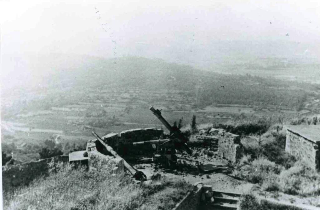 Fort de Six Fours - Batterie de Flak Tor01311