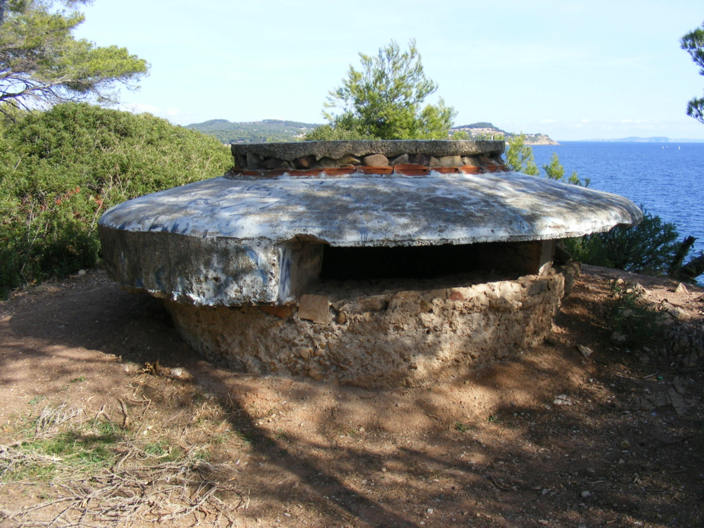 Tor 043b, Anse de Fabrégas (La Seyne, 83) Tor04310