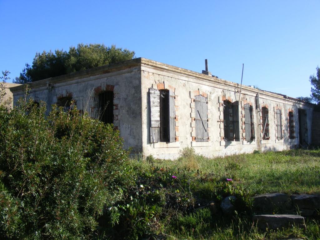 Tor 103, Pointe de Marégau (Saint Mandrier, 83) Tor10328
