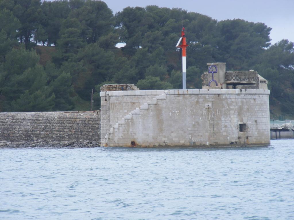 Pointe de La Vieille (Saint Mandrier, 83) Tor14010