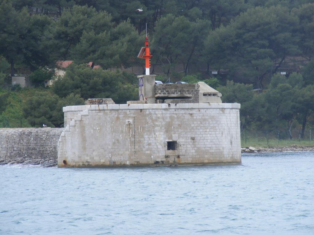 Pointe de La Vieille (Saint Mandrier, 83) Tor14011