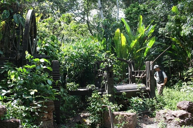Voyage en Guyane Img_2810