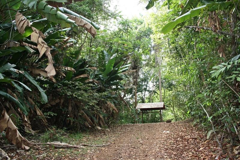 Voyage en Guyane Img_2811