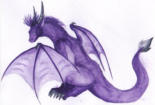 Dragons mauves Adool10