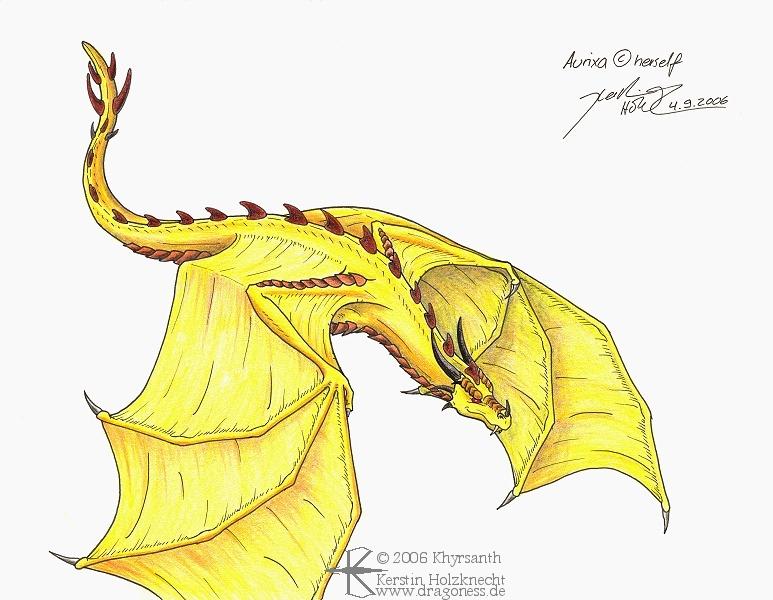 Dragons jaunes Aurixa10
