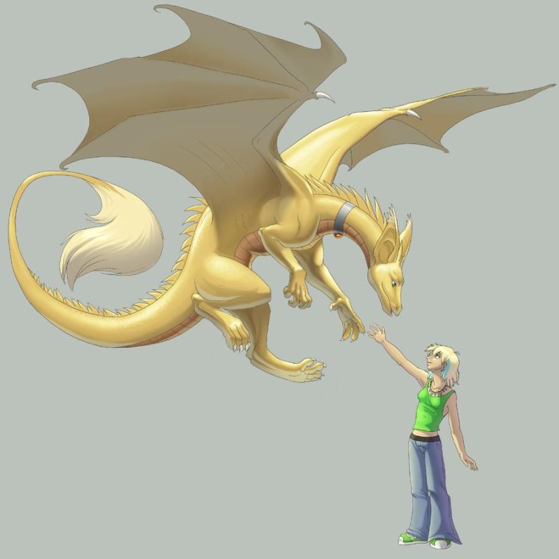 Dragons jaunes Aurora10