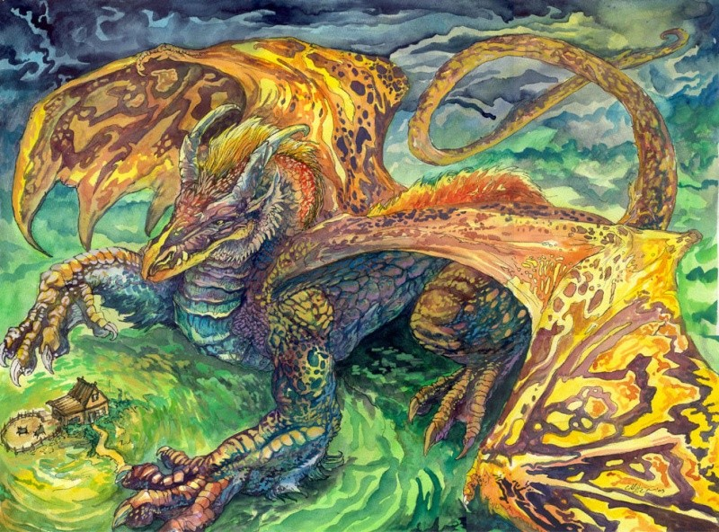 Dragons jaunes Chuck_10