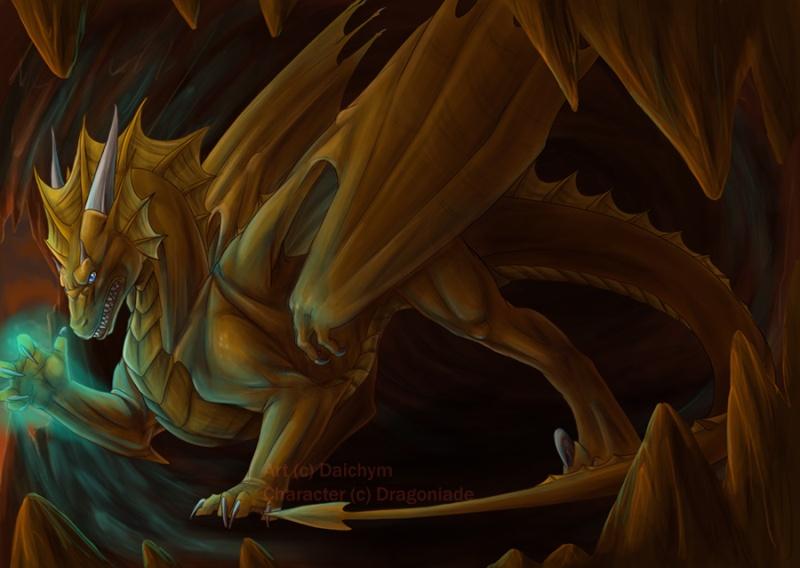 Dragons jaunes Commis10