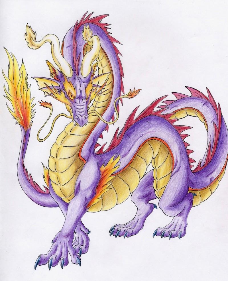 Dragons mauves Elegan10