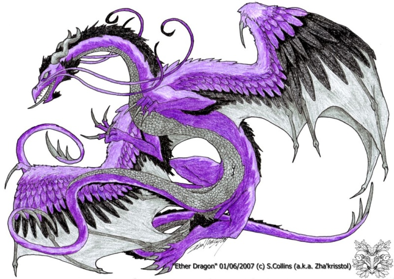 Dragons mauves Ether_10