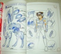 [Manga] Saint Seiya - édition deluxe VF (Kazenban) Sch04310