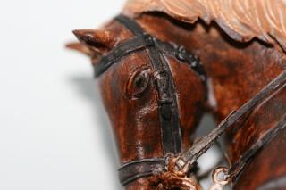 cavalier Suisse Fig_0212