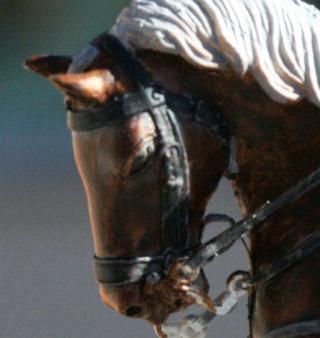cavalier Suisse Tete10