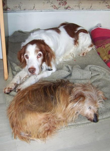 RATA aime être près de nous (29 janvier 2010) Bingo-13