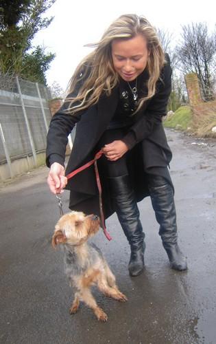 DOOGY est adopté (27 février 2010) Doogi-12